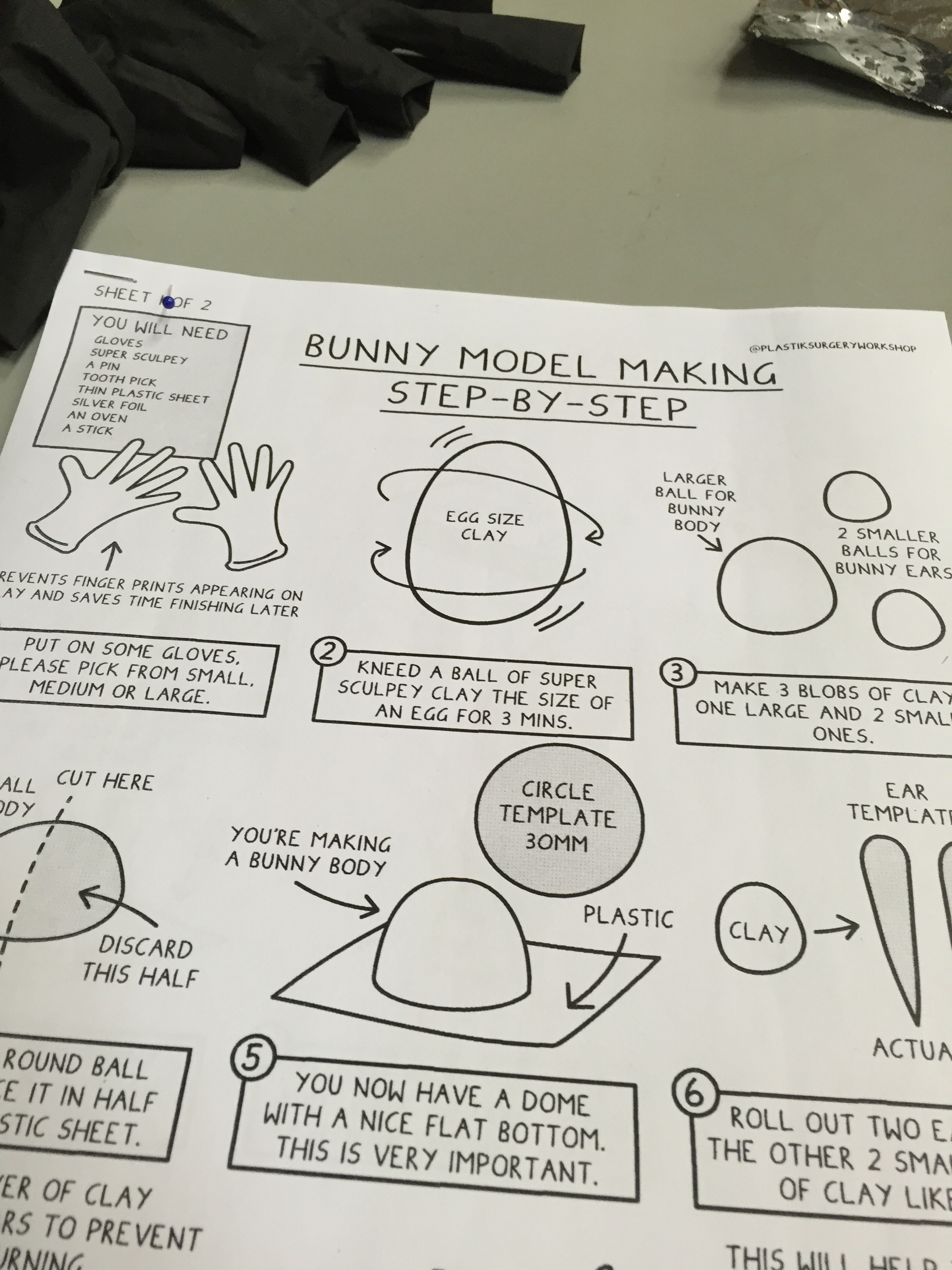 Bunny model guide